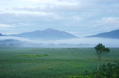 見晴から朝靄の尾瀬ヶ原と至仏山