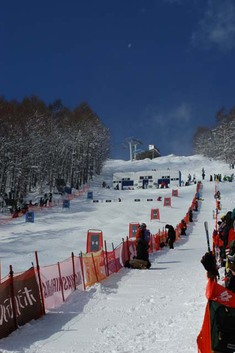 2013 FIS フリースタイルスキーW杯 猪苗代大会