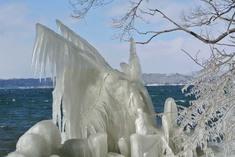 2014 しぶき氷