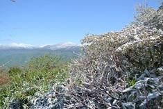 今日は安達太良山山開き